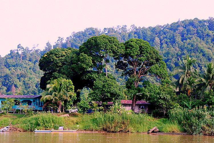 Billit Village