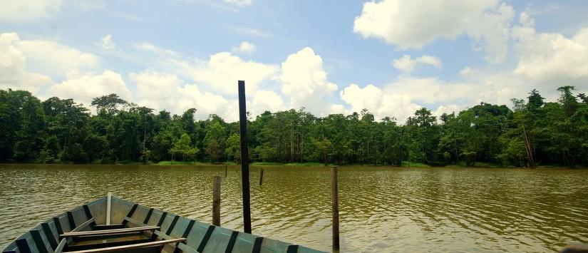 Ox Bow Lake Sabah Sandakan 3