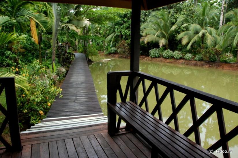 Sepilok Jungle Resort 1