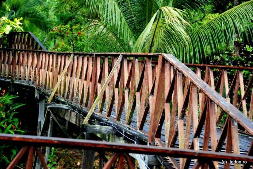 Sepilok Jungle Resort 2
