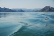 Montenegro Skadar Lake 4