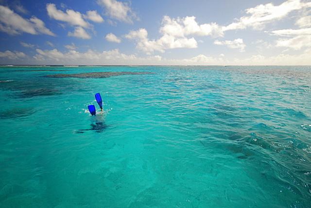 snorkelling fins aitutaki lagoon reef