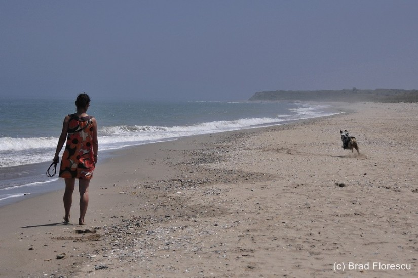 Bulgaria coast Shabla deserted beach