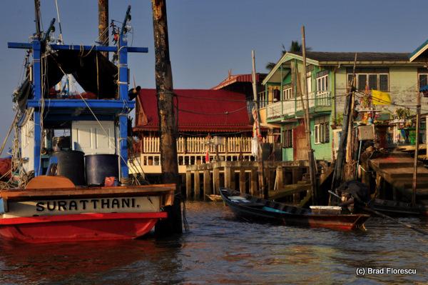 Surat Thani Tapi Tapee River 20
