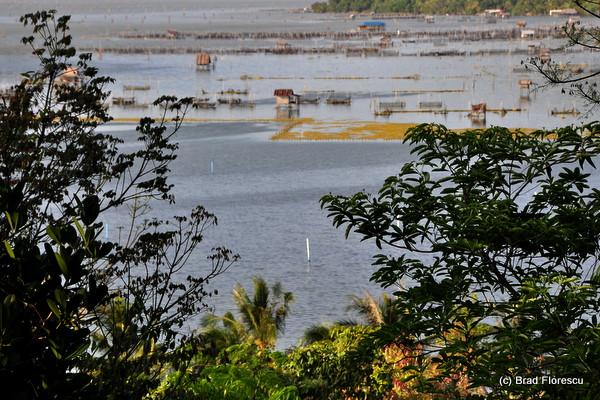 Ko Yor Island Songkla 13