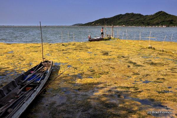 Ko Yor Island Songkla 2