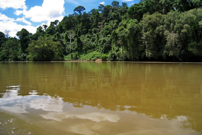 Borneo Iban CanonIMG_1444