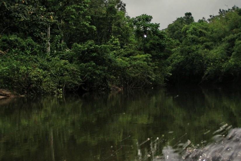Borneo Iban CanonIMG_1550