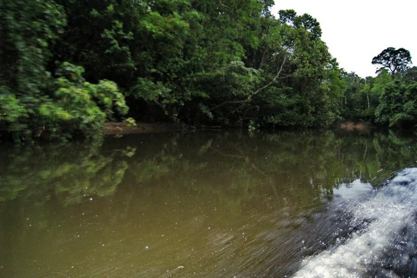 Borneo Iban CanonIMG_1569