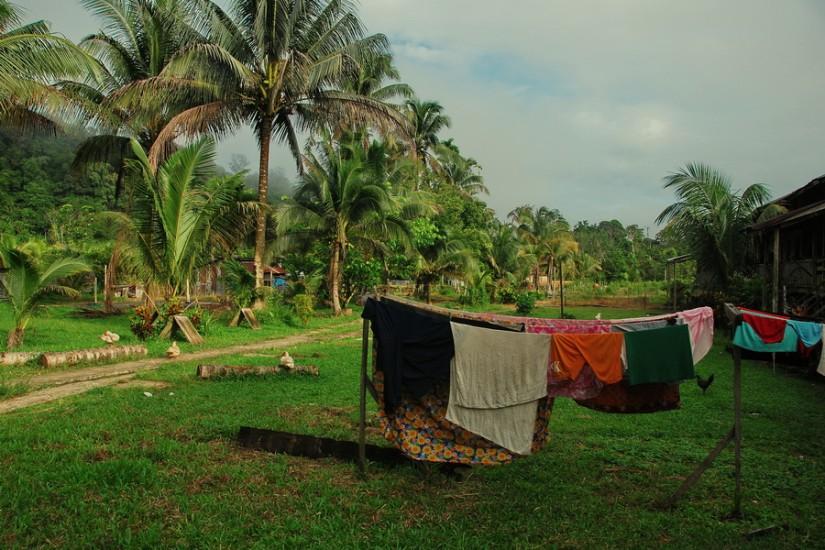 Borneo SempornaDSC_0061