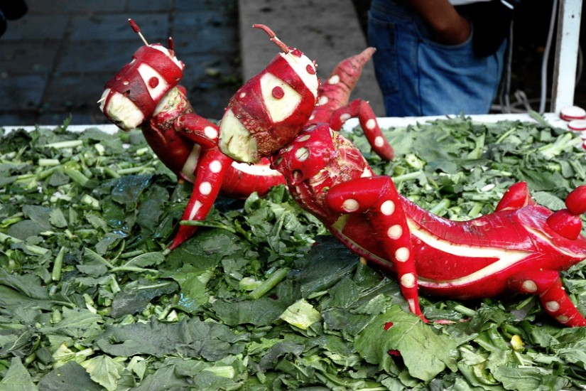 Oaxaca Radish Festival 2