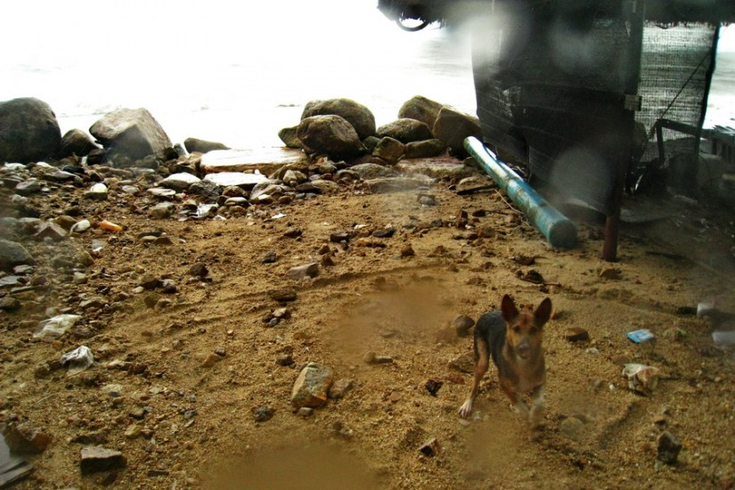 Koh Phangan Rain Storm Thailand2011-03-29 14-35-55 - IMG_6219