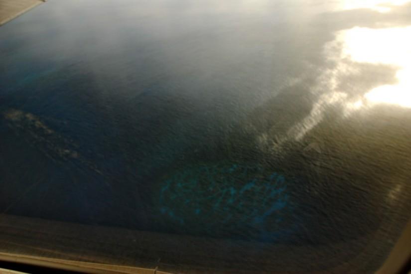 Tonga Vava'u aerial coral