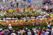 Festivalul florilor Madeira Portugalia 5