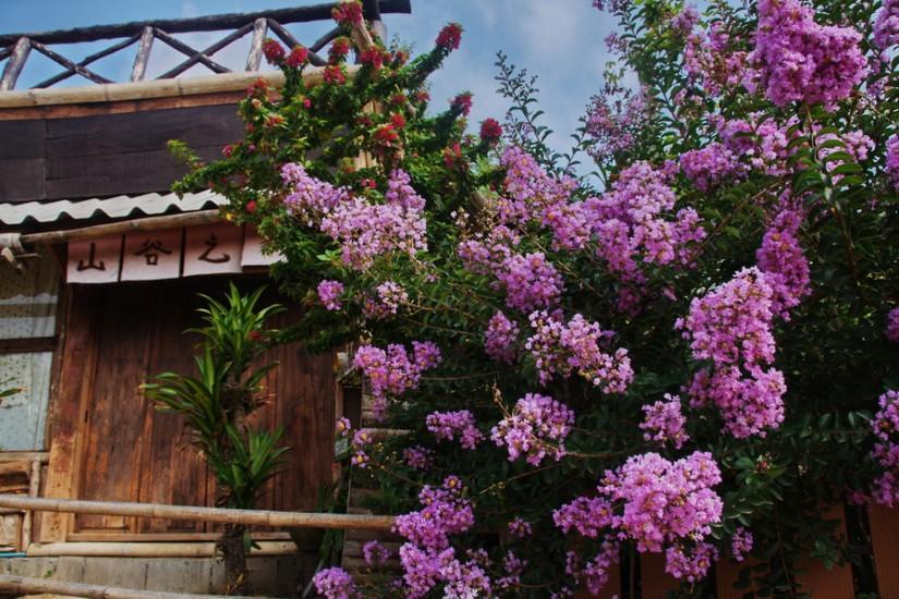 Thailand Mae Hong Son2011-04-16 08-50-41 - _DSC8688_2