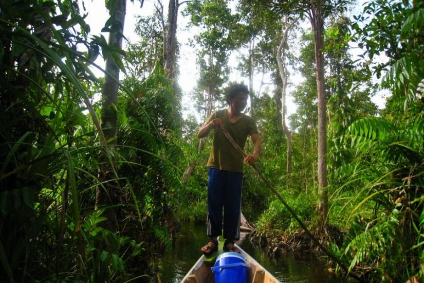 Sumatra Singkil delta jungla barca