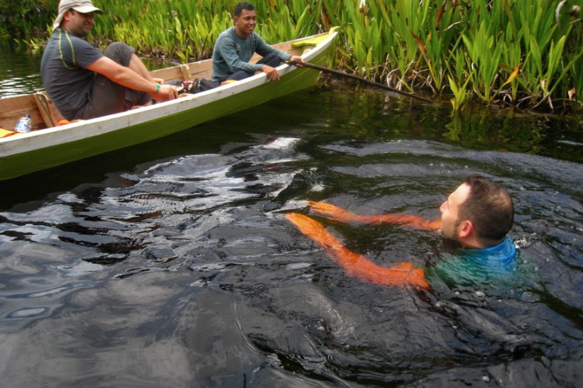 Sumatra Singkil delta inot jungla
