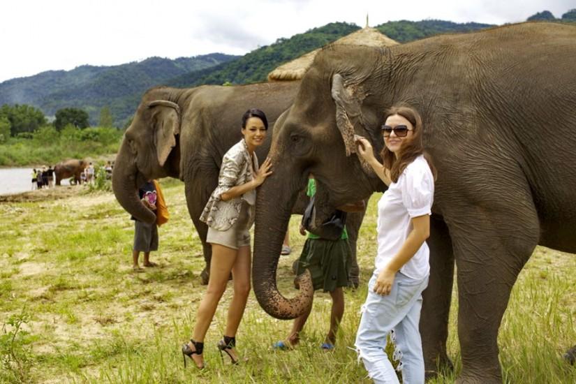 Andreea Raicu ThailandaElepant Nature Park_3