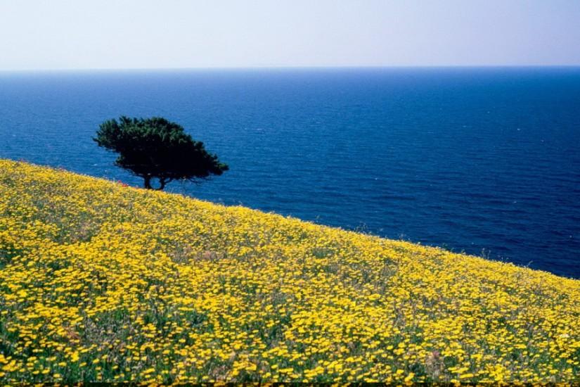 AntiparosAntiparos_Aegean_Sea_Greece