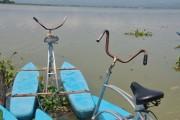 Phayao11.05.2011 11-03-33 - _DSC2217