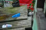 Sumatra Indonesia DSC_0001 (3)_2