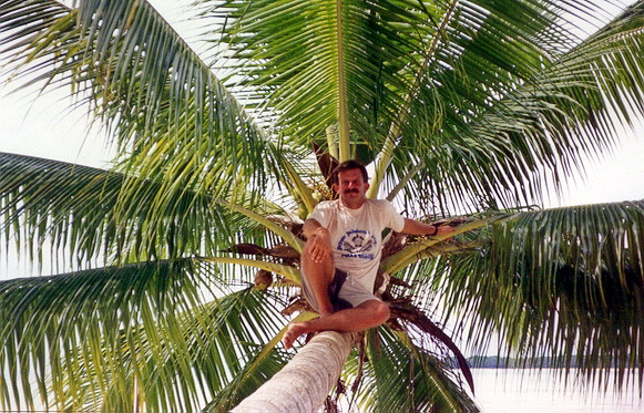 1995 05 Me in a palm tree