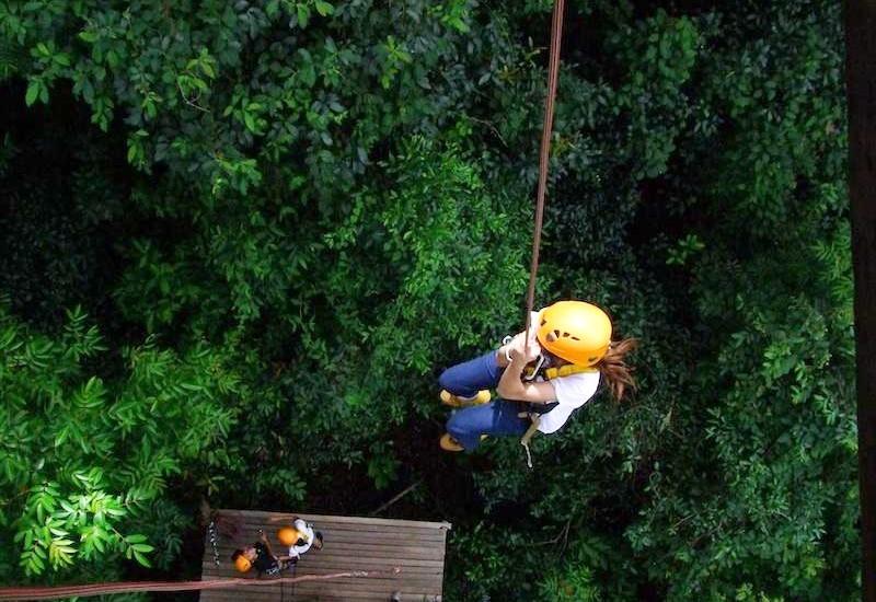 Jungle Flight 2