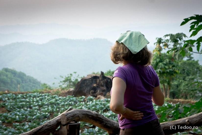 Excursie Thailanda Tedoo