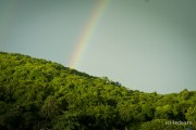 Koh Samet Jungle Rainbow Thailand