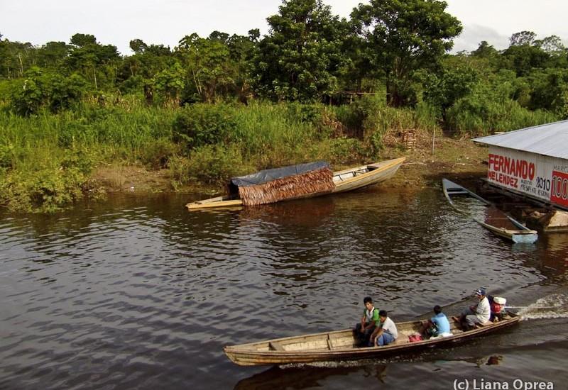 Brazilia Amazon Santa Rosa-3708