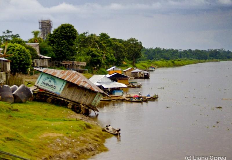 Brazilia Amazon Santa Rosa-3733-2