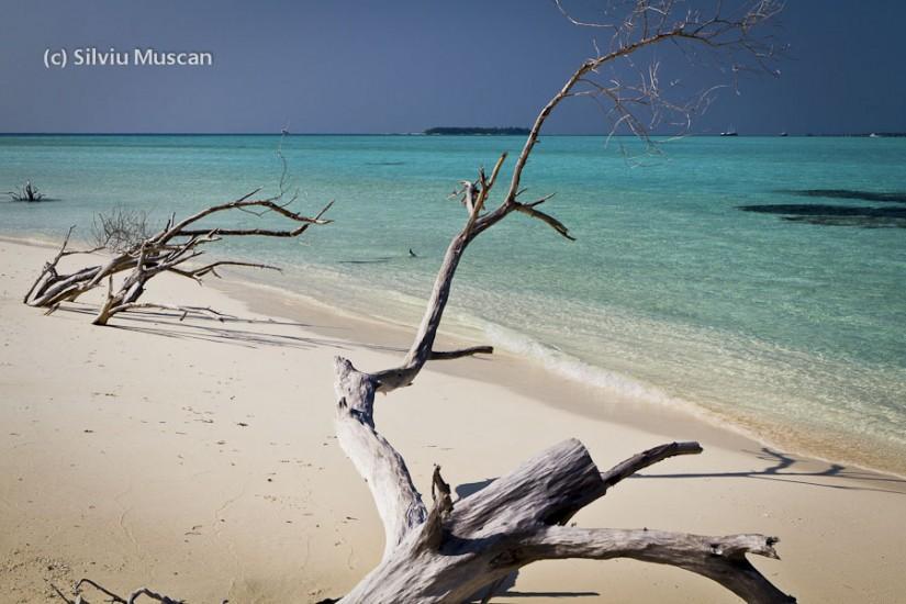 O zi ca oricare in Maldive