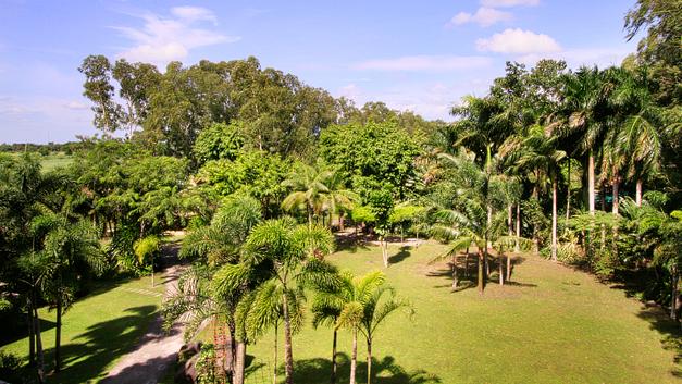 Nature Village Resort. east-garden-1