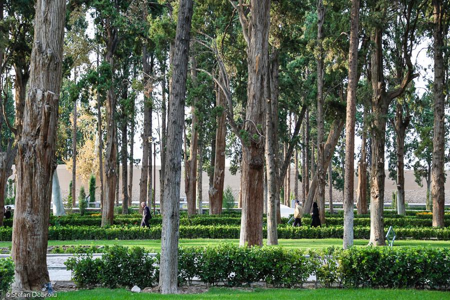 Kashan Iran grădina Fin