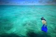 Aitutaki Snorkelling 2