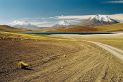 Chile desertul Atacama