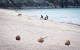 plaja alba Thailanda