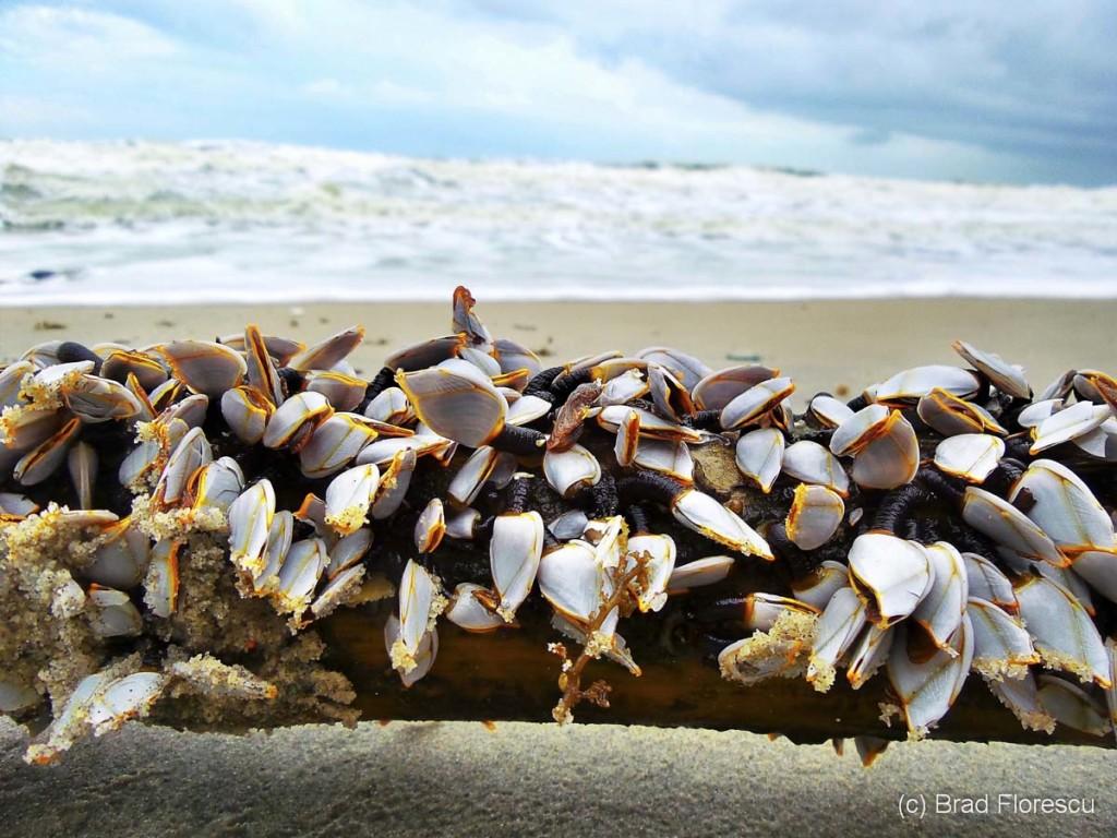 plaja Khanom Thailanda 2