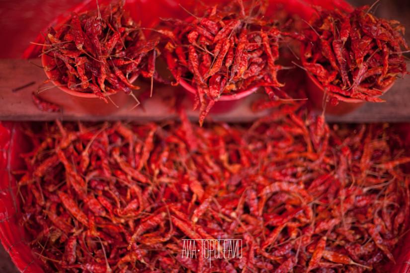 Mexicul are sute de tipuri de ardei iute.  În imagine, chile de arbol.