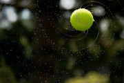 Tennis Ball Fly