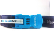 BlueBiz (1 of 1)