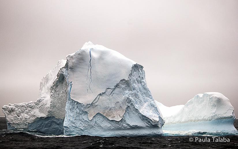 antarctica10-aisberguri-2