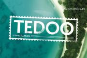 Logo Tedoo